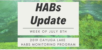 CLWN HABs Update