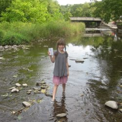 Eloise and Water Quality Report Card