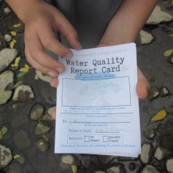 Young Scientists Completed Water Quality Report Card